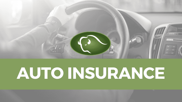 Auto Insurance Financial Advisor Services